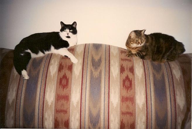 Barney & Fluffy - Mid-1990s
