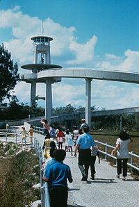 shark-valley-tower